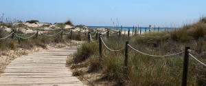 canet2